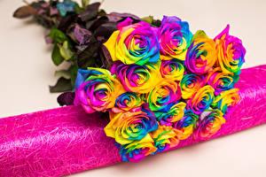 Фото Букеты Розы Разноцветные Цветы