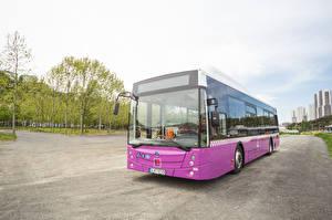 Картинки Автобус Фиолетовый 2014-17 Temsa Avenue LF CNG Авто