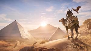 Картинка Верблюды Воители Египет Рассветы и закаты Assassin's Creed Origins Пирамиды Игры 3D_Графика
