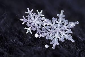 Фотография Крупным планом Снежинки
