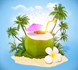 Картинка Кокосы Птицы Коктейль Остров Пальмы Зонт 3D Графика