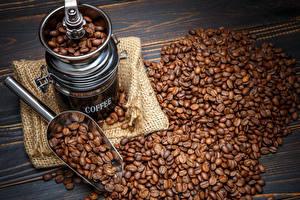 Фотография Кофе Кофемолка Зерна Еда