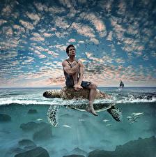 Картинки Креатив Черепахи Мужчины Воде Небо Сидит