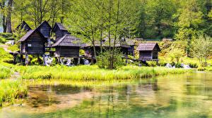 Фото Хорватия Парки Озеро Трава Деревья Plitvice national park