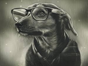 Картинка Собаки Рисованные Черно белое Очки Животные