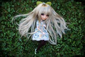 Фотография Кукла Девочки Блондинка Волосы
