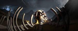 Фотография Фантастический мир Скелетов Костры Фантастика