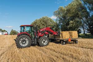 Фото Поля Сельскохозяйственная техника Трактор Сено 2015-17 Case IH Farmall 110C