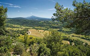 Обои Франция Пейзаж Поля Леса Холмы Vaucluse Природа