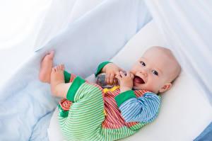 Фотографии Младенцы Смотрит Ребёнок