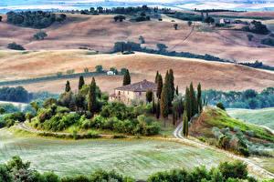 Картинка Италия Тоскана Пейзаж Дома Поля Деревья Природа