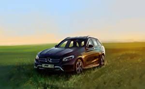 Фото Mercedes-Benz Рисованные Трава Автомобили