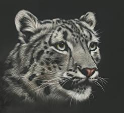 Фото Рисованные Большие кошки Ирбис Головы Морда Усы Вибриссы Черно белое Черный фон Смотрит животное