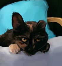 Фото Рисованные Кот Морды животное