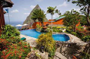 Фото Курорты Ландшафтный дизайн Плавательный бассейн Пальмы Jalousie Beach Saint Lucia Природа