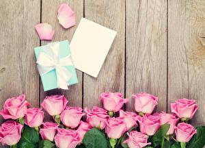Фото Розы Доски Розовый Подарки Лепестки Шаблон поздравительной открытки Лист бумаги Цветы