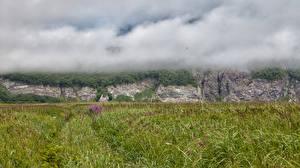 Картинка Россия Камчатка Трава Туман Природа