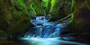 Фотография Шотландия Водопады Пещера Утес Мох Finnich Glen Природа