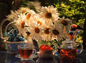 Фотография Натюрморт Чай Чайник Ромашки Чашка Корзина Пища Цветы