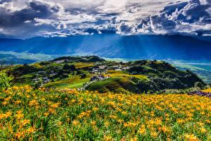 Картинка Тайвань Китай Пейзаж Поля Небо Холм Облака Fuli Hualien Природа