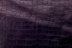 Картинки Текстура Крокодил Кожа материал skin