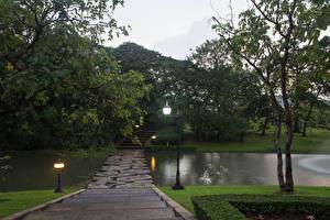 Фотографии Таиланд Бангкок Парки Пруд Уличные фонари Деревья Лестница Природа