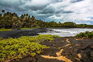 Обои Тропики Побережье Штаты Гавайи Природа