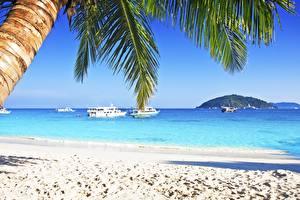 Обои Тропики Море Речные суда Пляже Пальмы Природа