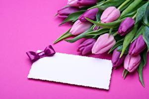 Картинки Тюльпаны Фиолетовый Шаблон поздравительной открытки Цветы