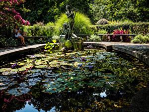 Фотографии США Парки Пруд Скульптуры Нью-Йорк Кусты Central Park Conservancy Garden Природа