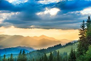 Фото Украина Горы Леса Небо Карпаты Облака