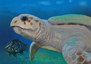 Обои Подводный мир Рисованные Черепахи