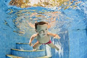 Картинка Вода Плавательный бассейн Мальчики Лестница Ребёнок