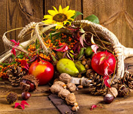 Картинки Осенние Подсолнухи Яблоки Орехи Груши Ягоды Шишки