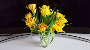 Фото Букеты Тюльпаны Черный фон Ваза Желтый