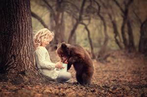Фотография Медведи Бурые Медведи Детеныши Ствол дерева Животные