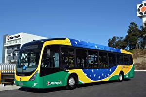 Фотографии Автобус 2013-17 Marcopolo Viale BRS Машины