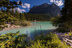 Фото Канада Горы Озеро Леса Камни Alberta