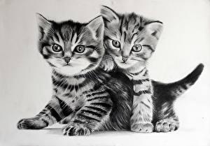 Картинка Кошки Рисованные Котята 2 Черно белое