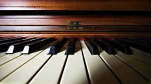 Картинки Вблизи Фортепиано