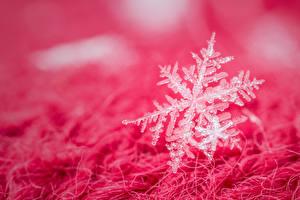 Картинки Вблизи Снежинки