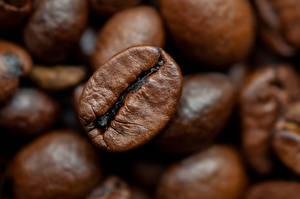 Картинки Кофе Макросъёмка Крупным планом Зерна Еда