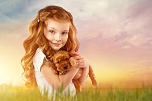 Картинка Собаки Девочки Рыжая Щенок Смотрит Ребёнок