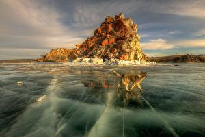 Картинки Собаки Россия Озеро Льда Baikal Природа