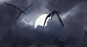 Фото Драконы Крылья Летящий 2 Фантастика