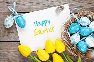 Фотографии Пасха Праздники Тюльпаны Яйца Английский Цветы