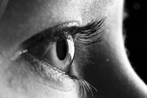 Фото Глаза Вблизи Макро Ресница Черно белое