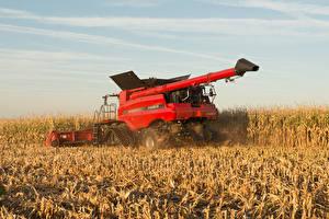 Фотографии Поля Сельскохозяйственная техника Зерноуборочный комбайн Красный Колоски 2013–14 Case IH Axial-Flow 9230