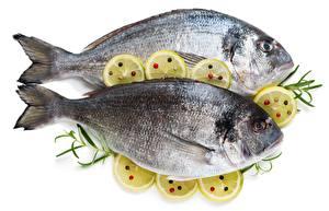 Фотография Рыба Лимоны Белый фон Еда