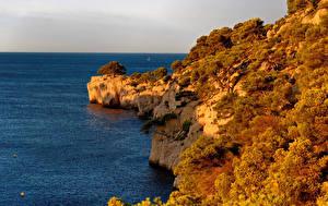 Фотографии Франция Побережье Осень Залива Утес Кустов Calanque Port Miou Provence Природа